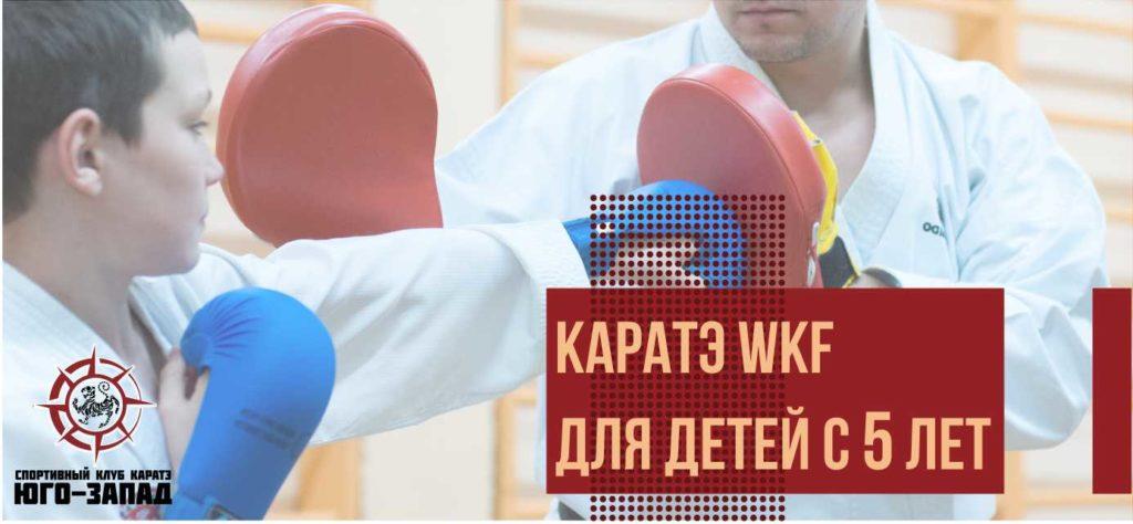 каратэ для детей wkf